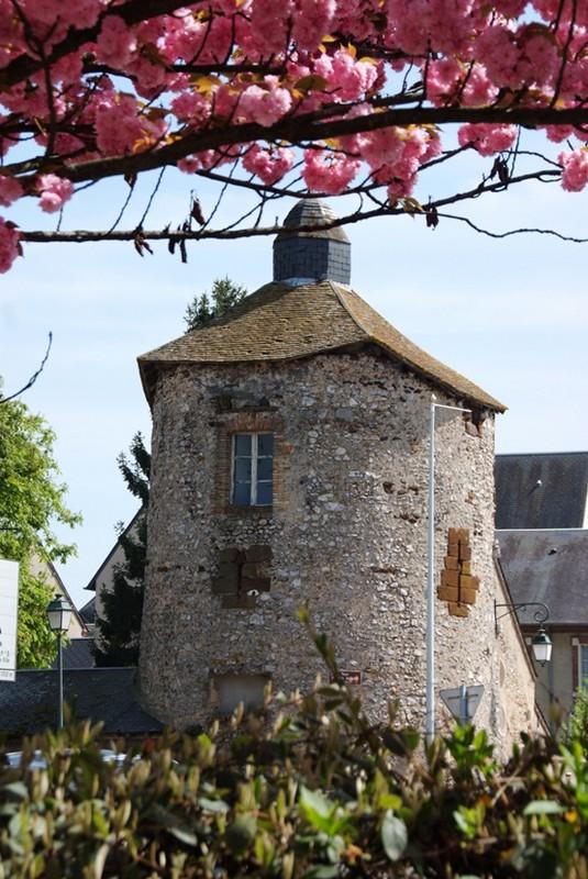 Ancienne Tour d'Enceinte – Aubigny-sur-Nère