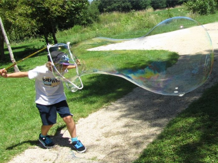 18-NEUVY-SUR-BARANGEON – bulles geantes