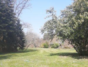 18-SAINT LAURENT – Domaine du bois maitre 8