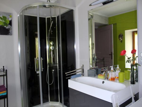 GITE LE NOIR CB12406 LAZENAY SDE WC