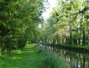 balade-de-mery-sur-cher-credit-sologne-nature-environnement-4_0