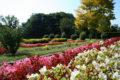 jardinblancafort